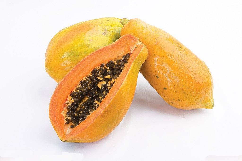 Factory Supply Papaya extract Papain