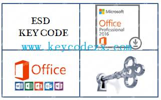 WHOLESALE Office 2016 Professional Plus Key Code Brand New,100% activated online