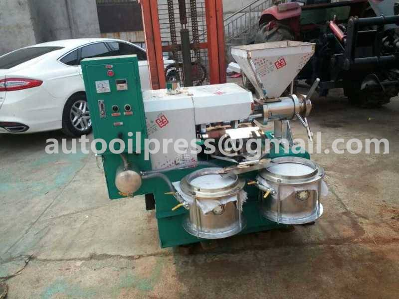 Automatic Grade and Sunflower olive palm peanuts sesame nuts corn Usage small cold press oil machine