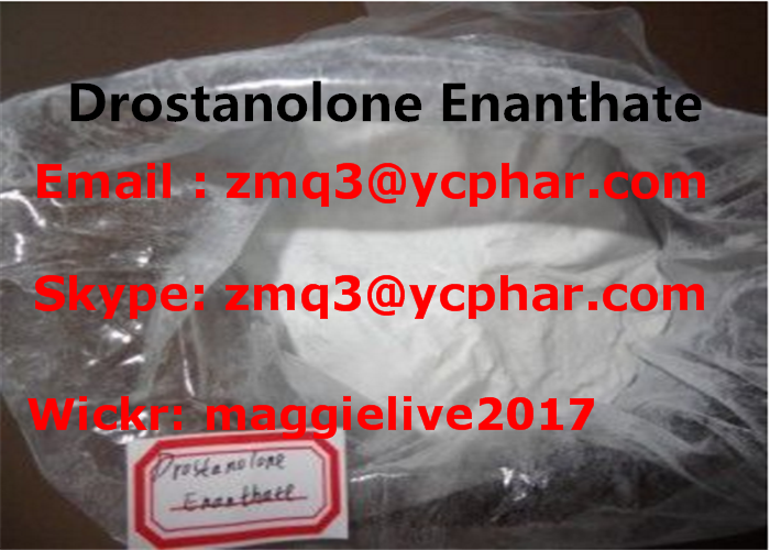 CAS 303-42-4 Human steroid hormone Methenolone Enanthate powder