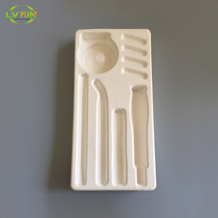 White packaging sugarcane bagasse tray pulp mold package
