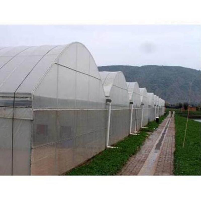 Greenhouse Agriculture Plastic Film Mulch Film