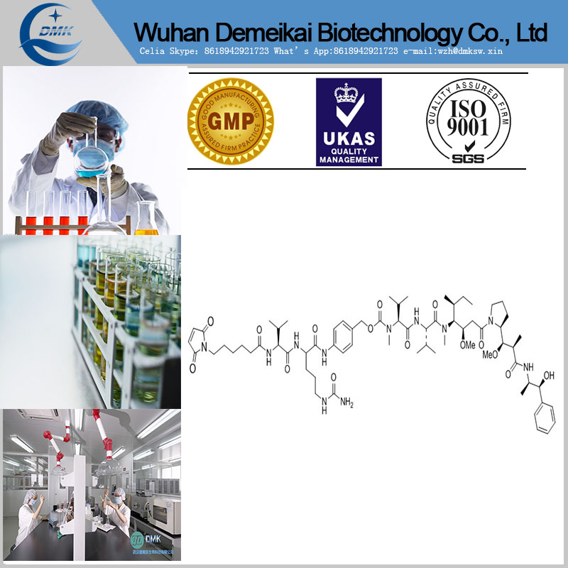 Vc-MMAE Antibody-drug for research only 646502-53-6