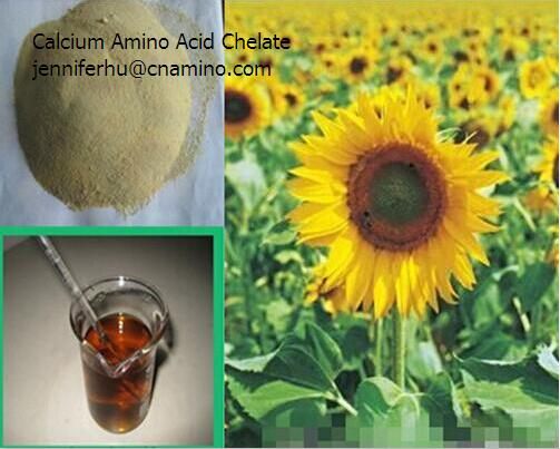 calcium-amino acid chelation organic fertilizer