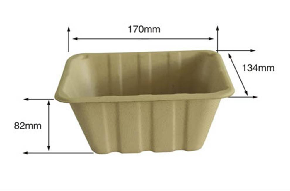 Disposable Biodegradable Bagasse Trays for Fruit (High Quality)