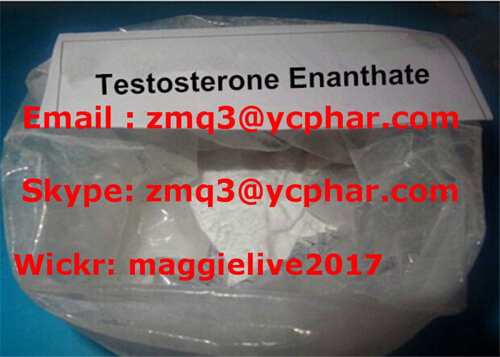 Testosterone Enanthate Steroids Oil Injections & Raw Powder