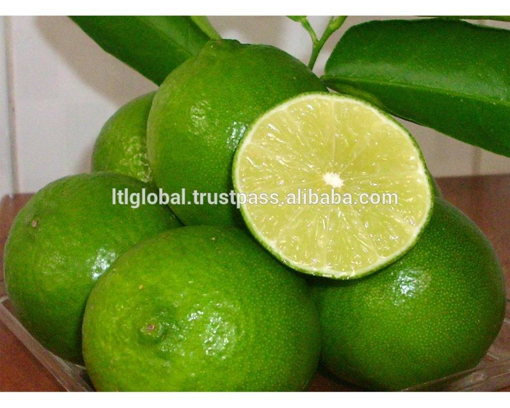 BEST PRICE FOR FRESH GREEN LEMON WITH GOOD QUALITY