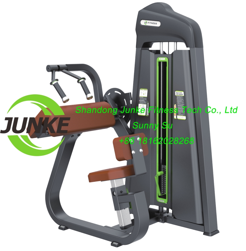 z628 triceps biceps seated commercial fitness equipemnt gym equipment