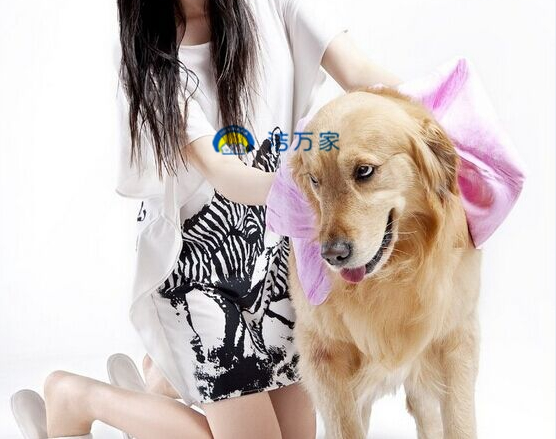 Good Quality Low Price Pet Fur Washing Drying Towel Cloth