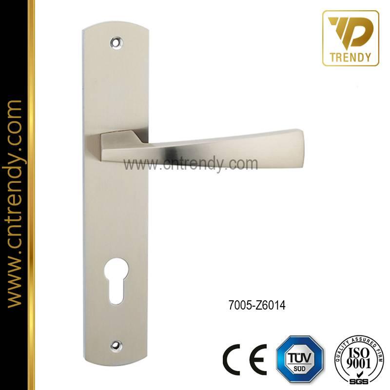 Exterior Door Handle Lever Lock Handle on Backplate (7005-Z6014)