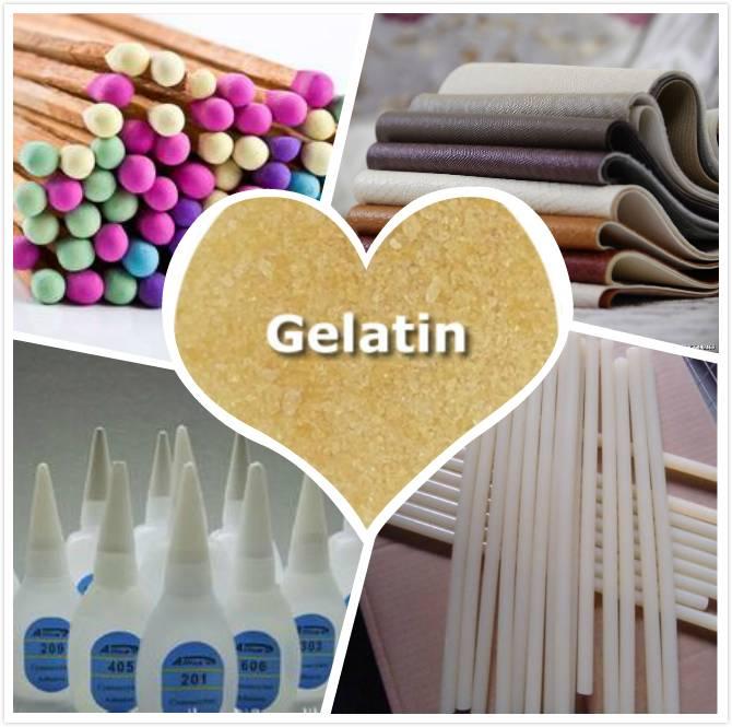 high quality industrial gelatin