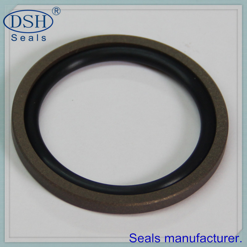 Offer metric hydraulic seals