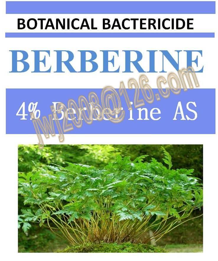 4% Berberine AS, biopesticide, botanic bactericide, natrual, organic