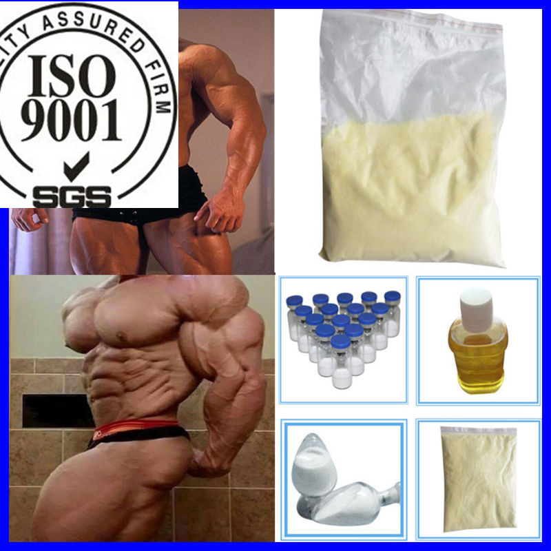 USP Standard 99% Pure Healthy Mestanolone Nandrolone Steroid CAS 521-11-9 for Weight Loss