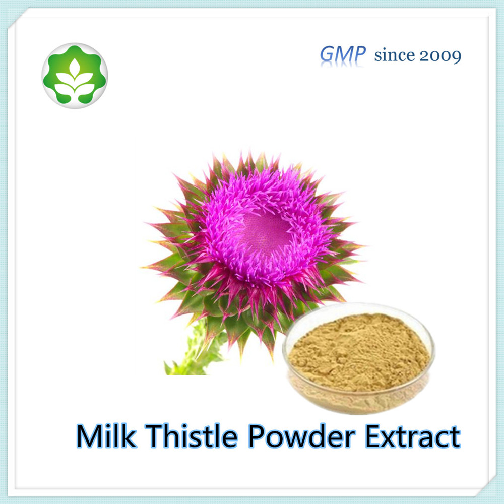 pure nutrition enhancer milk thistle seed extract for liver