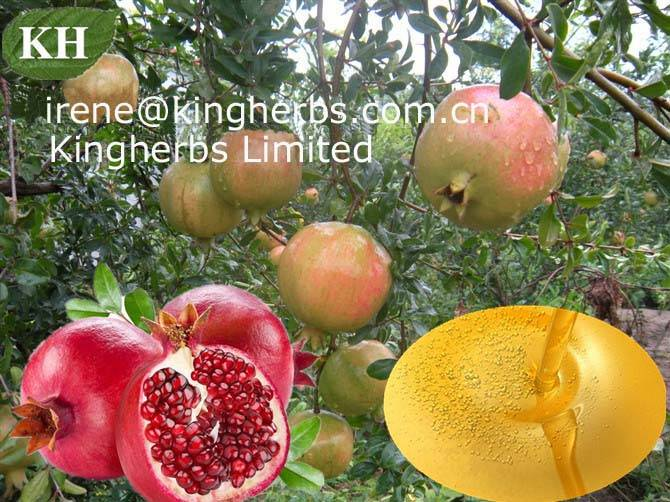Pomegranate seed oil Extract  CAS:84961-57-9