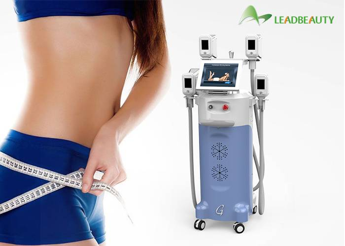 fat freeze weight loss body sculpting vertical cryolipolysis slimming slim machine on sale