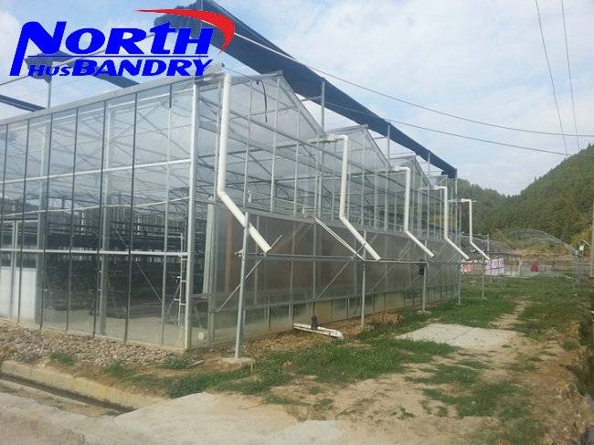 Greenhouse Project Used Commercia Agriculture Galvanized Steel Low Cost Greenhouse for sale