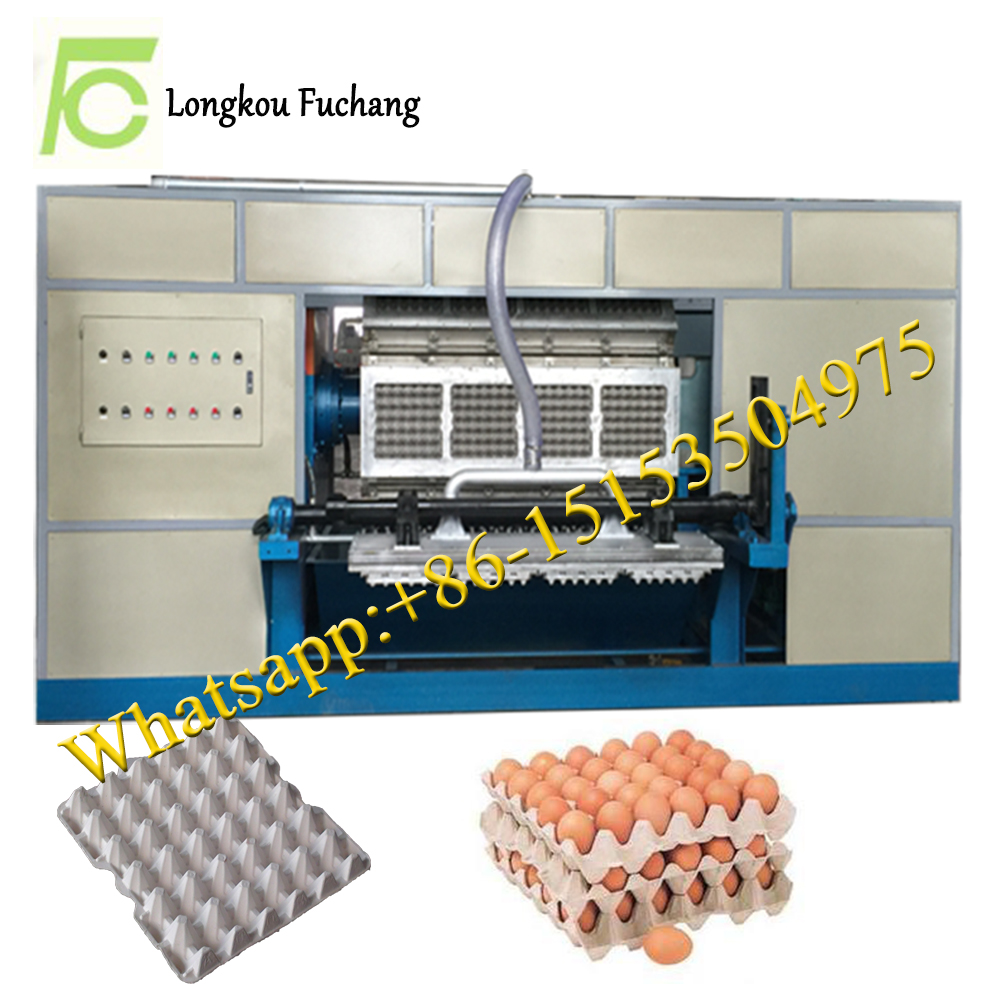 Semi-automatic forming egg dishes machinery from Longkou city