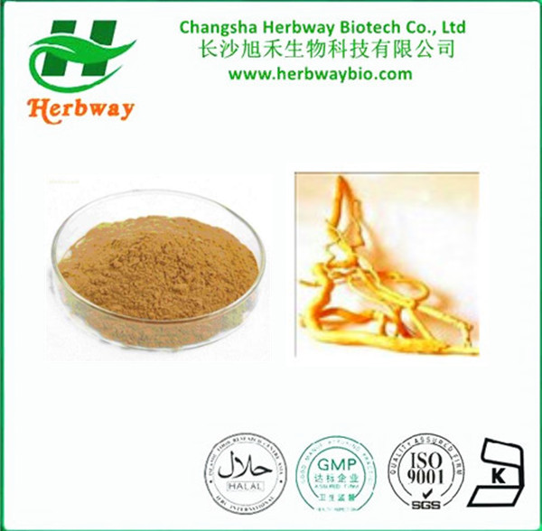 Eurycoma Longjack Powder Extract