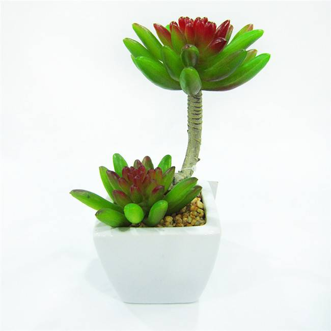 Artificial Mini Potted Succulent Plants for Sale