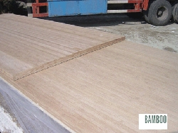 bamboo panels 3