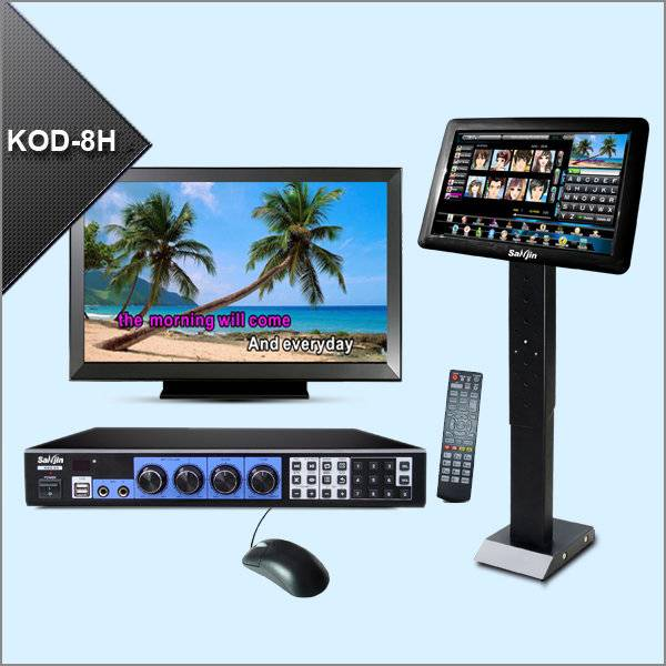 Professional KTV karaoke player system