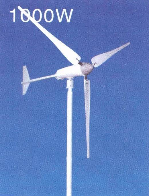 1000W Wind Turbine (CE)