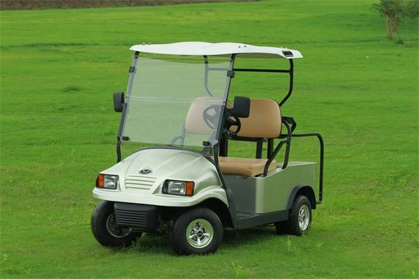 Falcon brand 2 seat Golf Cart with Solar - Eagle Runabout