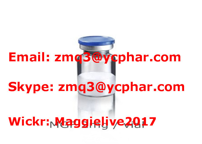 Mechano Growth Factor MGF Growth Hormone Peptides Muscle Growth USP / EP