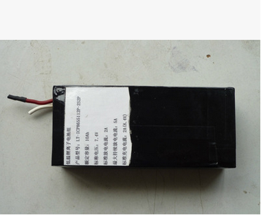 The Lithium Battery with Heating and Cooling Temperature Control Function
