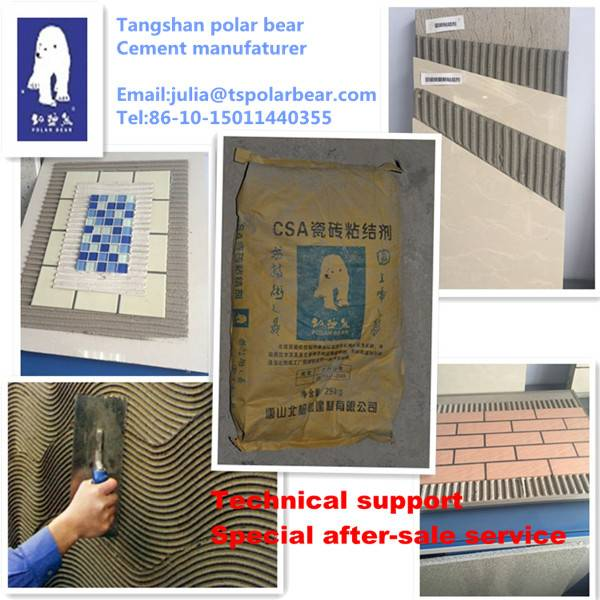 Mortar plant Ceramic wall and ground CSA tile adhesive