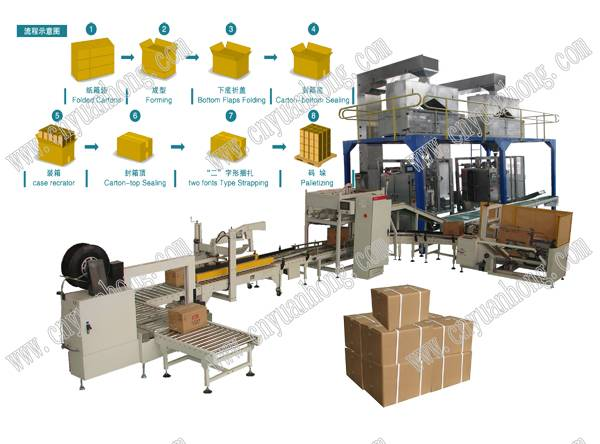 Automatic Carton Packing Line (LB450-3)