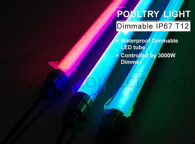 LED farm light dimmable IP67 dimmable led lighting