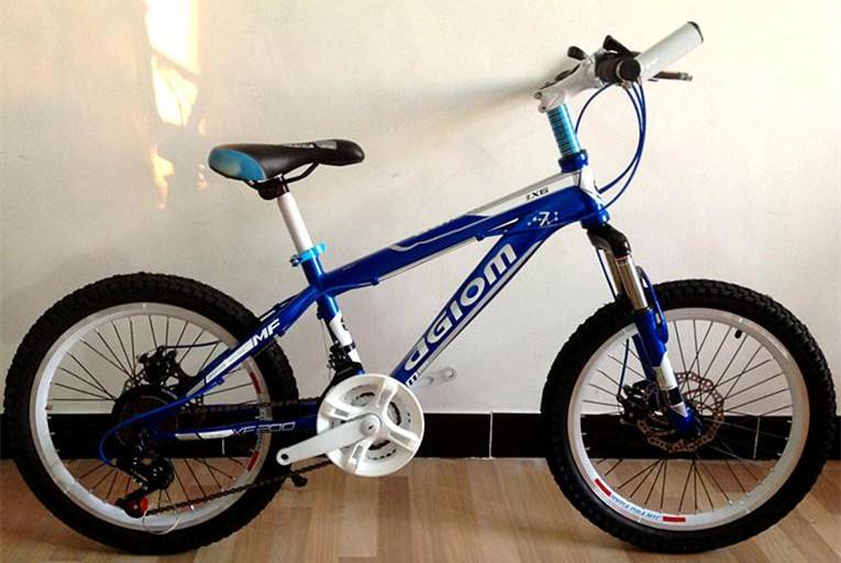 China factory oem 26 inch MTB bike