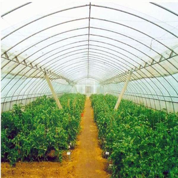 Green black and blue greenhouse shade plastic net
