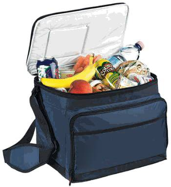 Picnic Lunch Cooler Bag