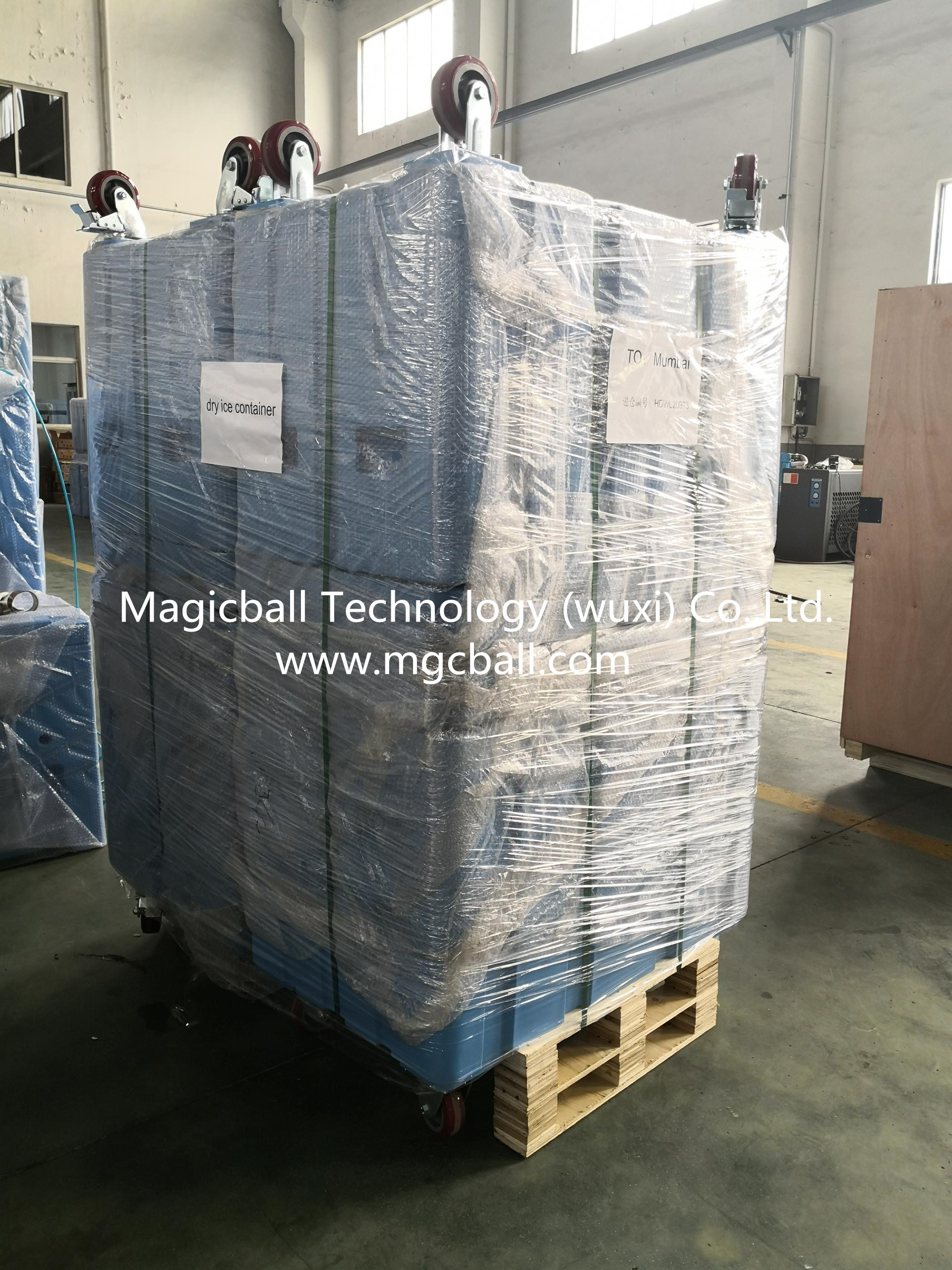20l styrofoam dry ice container/cold chain container