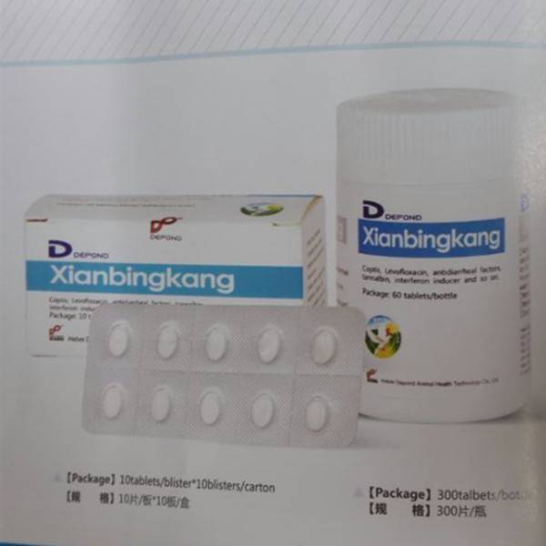 Enteritis Diarrhea Medicine Levofloxacin Xianbingkang poultry use (pigeon)