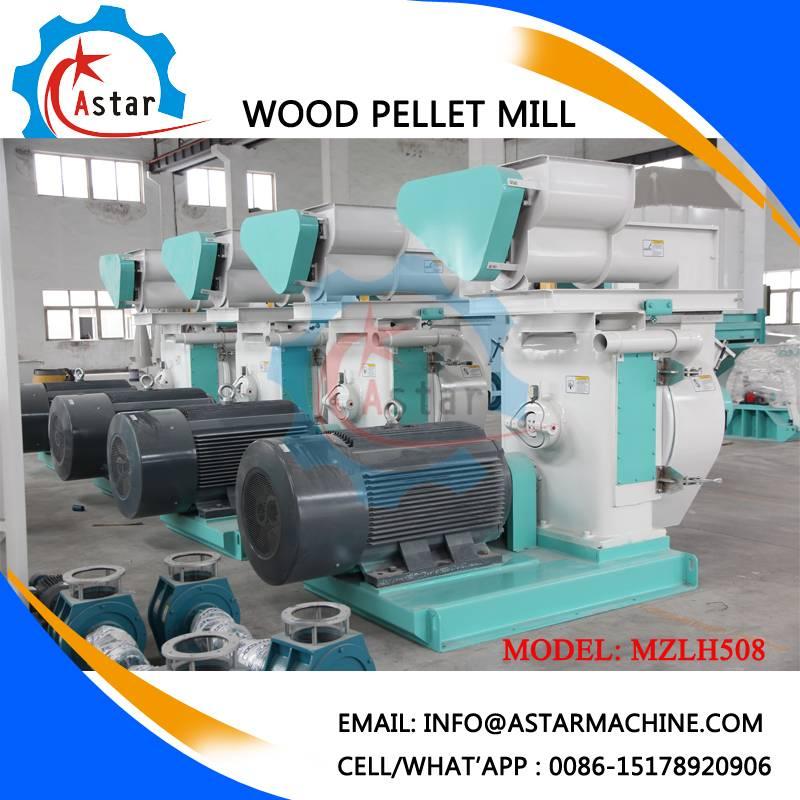 Hot Sale in Europe 1-10t/H Wood Pellet Line Wood Pellet Plant