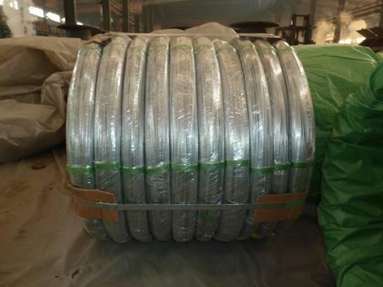Oval Galvanized Steel Wire