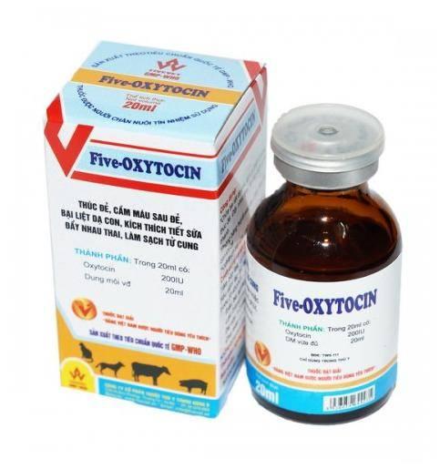 Five Oxytocin