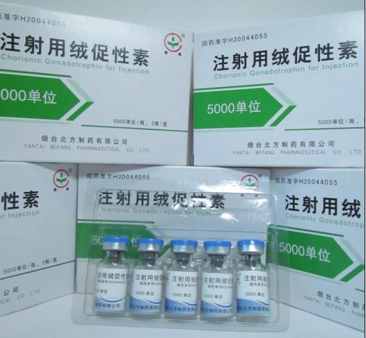HCG 1000iu Steroids Peptides  Human chorionic gonadotropin