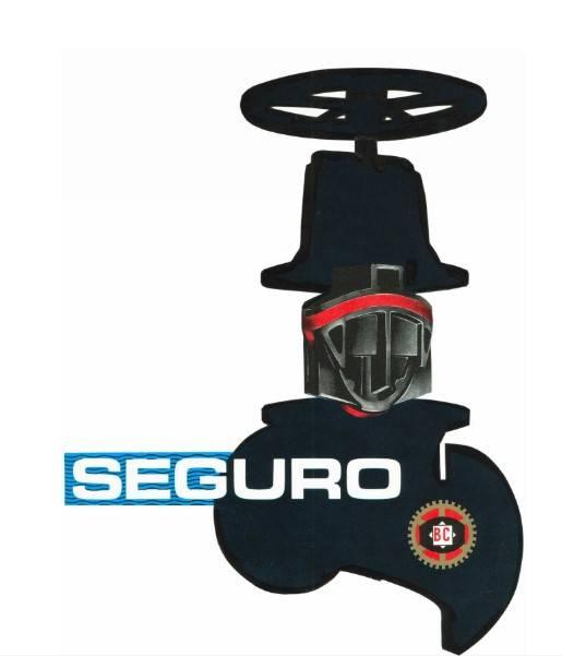 PN-10 Seguro Gate Valves
