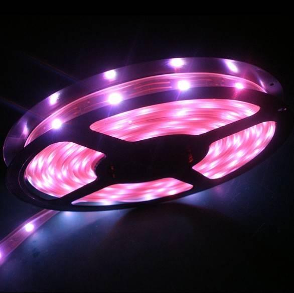 low power 12v 5050 smd led strip light, 5m/roll 72w