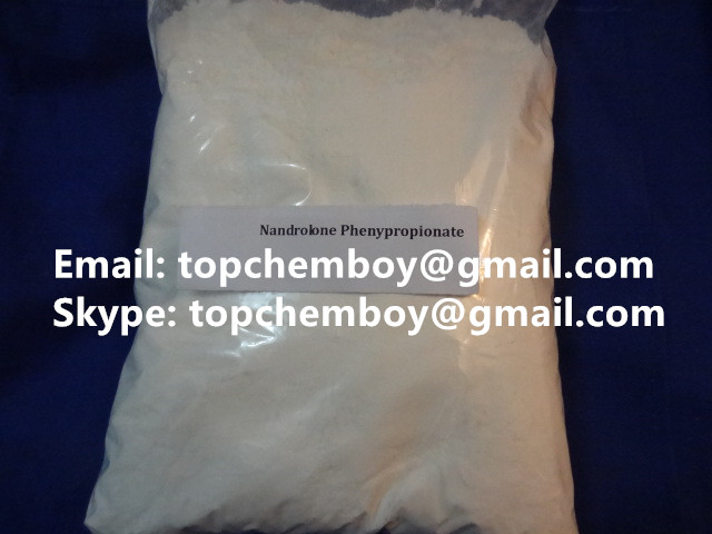 NPP Nandrolone phenylpropionate Raw Steroid Hormone