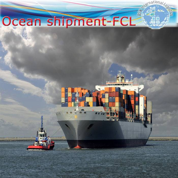 Sea freight from China to Aqaba as 20 full container