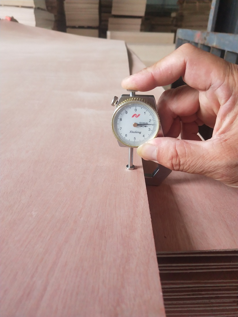 2.4mm Natural Sapele faced door size plywood