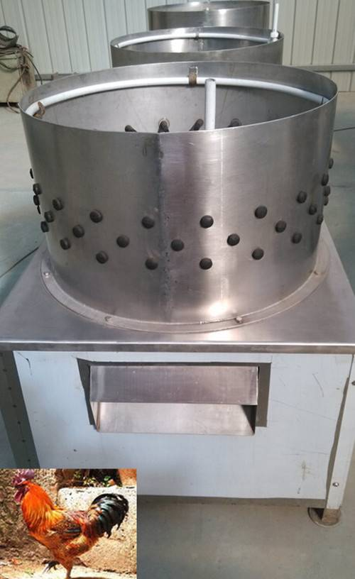 poultry dressing machine thesis Find here details of poultry dressing equipment manufacturers  poultry chicken dressing machine, commercial poultry processing equipment, poultry killing cones.