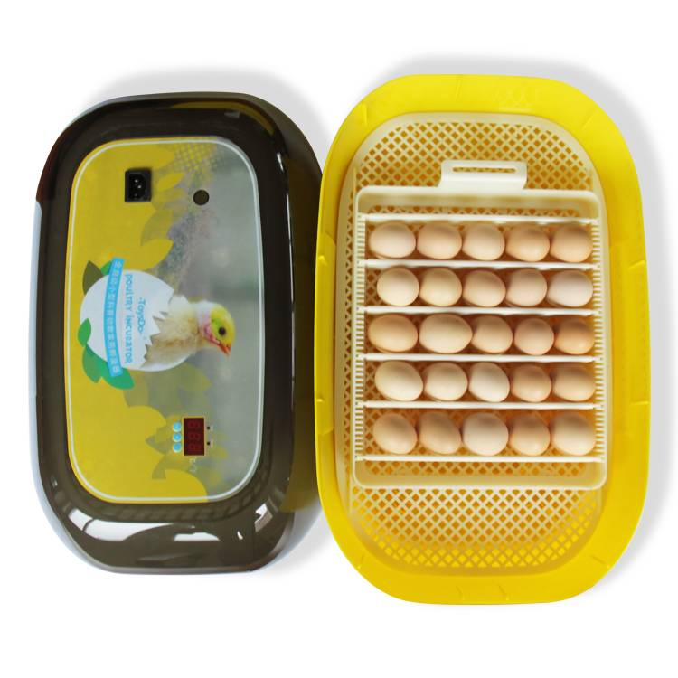 topest small full automatic hatcher poultry brooder/infant/baby/children incubator